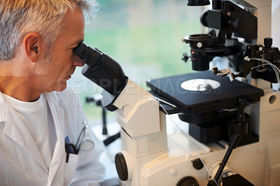 Buy stock photo Mature male lab technician looks at slides through a microscope