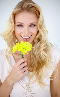 Buy stock photo Portrait of a pretty young woman holding a yellow flower