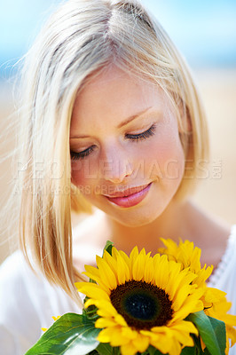 Buy stock photo Pretty young woman holding some sunflowers while outdoors