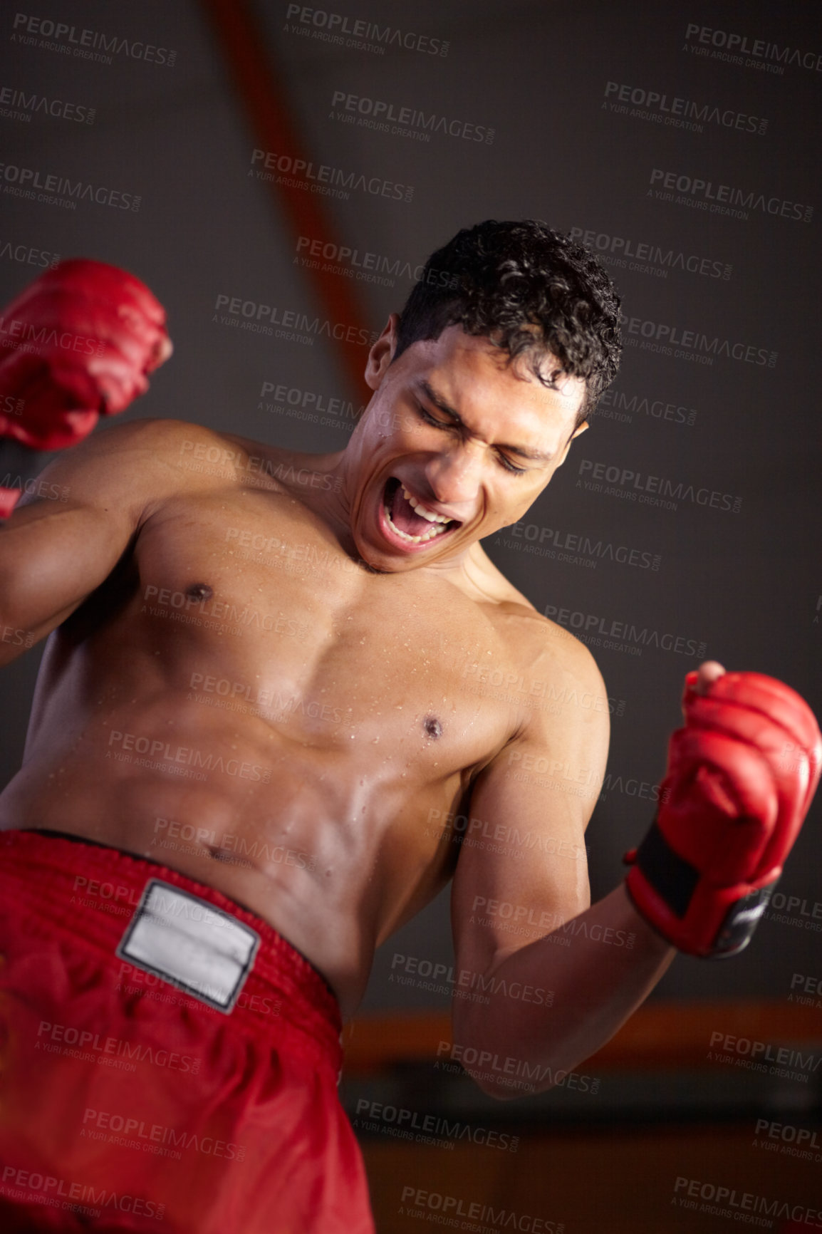 Buy stock photo A young fighter with his arms raised in victory after winning a fight