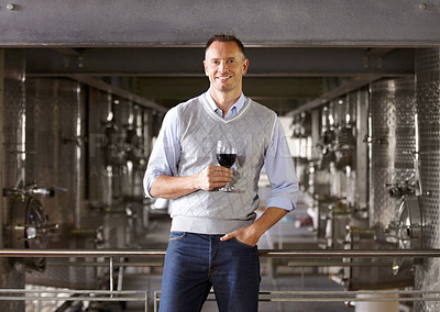 Buy stock photo Portrait of a mature wine maker with a glass of red wine in his cellar