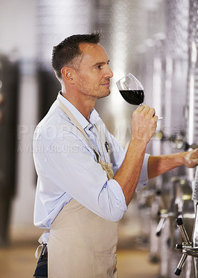 Buy stock photo A mature wine maker testing a batch of his red wine