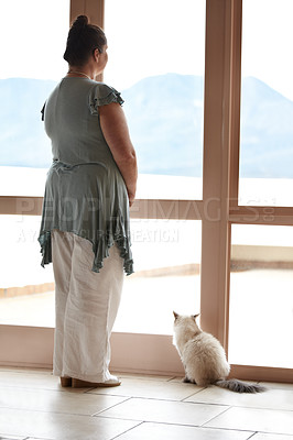 Buy stock photo A woman and her cat standing at a window and looking at the view