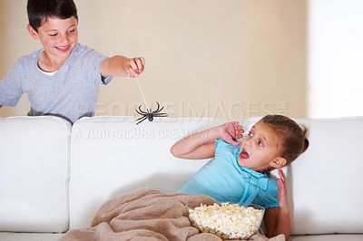 Buy stock photo Mischievous young boy scaring his little sister at Halloween with a rubber spider
