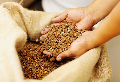 Buy stock photo Shot of hands cupping unprocessed coffee beans out of a full burlap sack