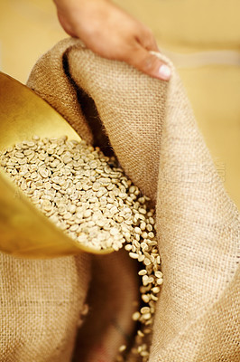 Buy stock photo Shot of unprocessed coffee beans being poured into a burlap sack