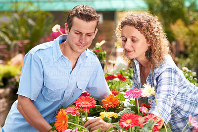 Buy stock photo A happy couple choosing flowers in a nursary