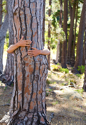 Buy stock photo Shot of someone hugging a tree in the woods