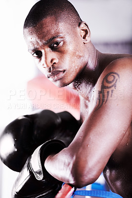 Buy stock photo An african american boxer leaning on the ropes and looking at you with resolve