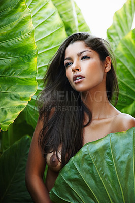 Buy stock photo Gorgeous young ethnic woman hiding her topless body behind a green leaf
