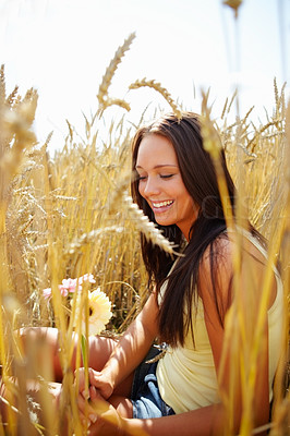 Buy stock photo Pretty young woman sitting in a crop field holding some summer flowers - copyspace