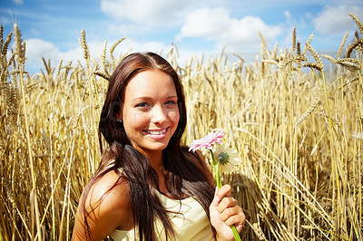 Buy stock photo Portrait of a pretty woman sitting in a summer wheat field holding flowers - copyspace