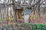 Treehouse in the middle of nowhere