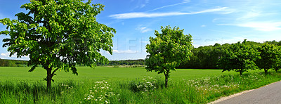 Buy stock photo Country road in Denmark (in summertime)