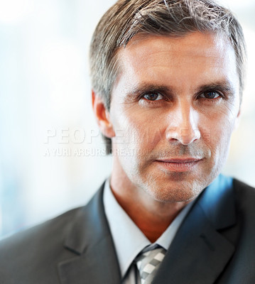 Buy stock photo Portrait of a happy successful mature business man