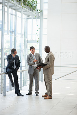 Buy stock photo Portrait of three business men working with files and folders