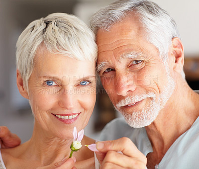 Buy stock photo Closeup portrait of a mature couple playing with a flower