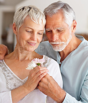 Buy stock photo Portrait of a loving husband presenting flower to wife