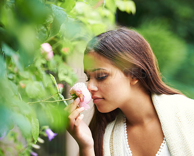 Buy stock photo Cropped shot of a gorgeous young woman smelling a rose