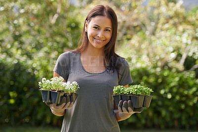 Buy stock photo A pretty woman holding a six-pack of asylum seedlings