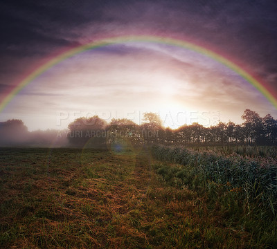Buy stock photo Shot of a beautiful rainbow over a forest