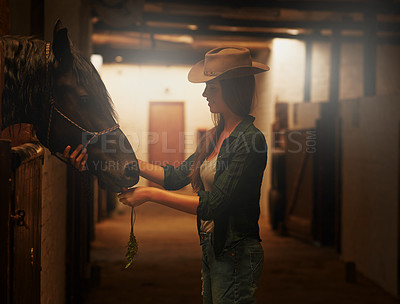 Buy stock photo Shot of a young woman tending to her horse in a stable