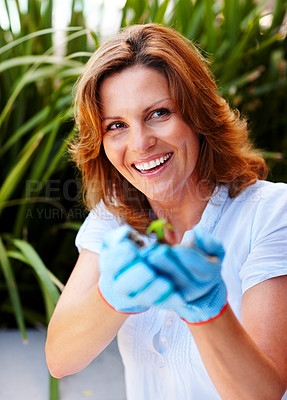 Buy stock photo Plant trees - Beautiful woman holding a young plant
