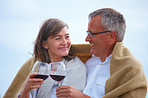 Portrait of a romantic old couple toasting wineglasses