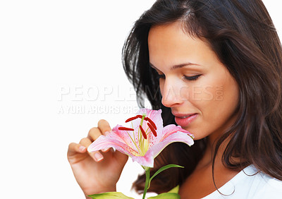 Buy stock photo Poratrait of a beautiful woman holding a fresh stargazer lily, isolated on white - copyspace