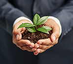 Nurturing sustainable growth in business