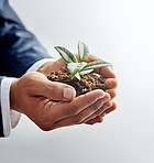 Helping business flourish