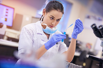 Buy stock photo Shot of a young scientist transferring liquid from a pipette to a test tube in a laboratory