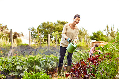 Buy stock photo Portrait of a woman watering her organic vegetable garden with her husband working in the background