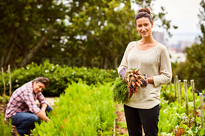 Buy stock photo Portrait of a smiling woman holding a bunch of carrots with her husband working in their organic vegetable garden behind her