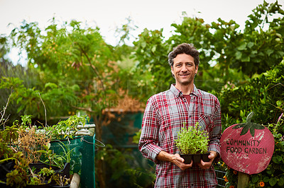 Buy stock photo Portrait of a smiling man holding a seedling while standing in his organic garden