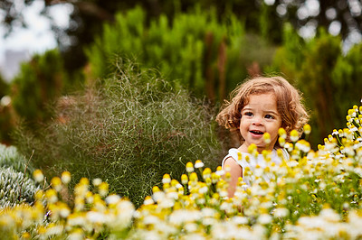 Buy stock photo Shot of a cute little girl looking at flowers in a garden