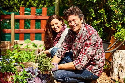 Buy stock photo Portrait of a mature couple working in their organic garden