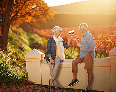 Buy stock photo Shot of a happy senior couple enjoying a glass of wine while exploring a vineyard