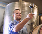 Making great wines using traditional, natural viticultural and winemaking methods