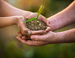 We all have a hand in our planet's future
