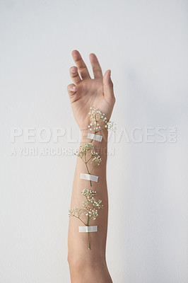 Buy stock photo Cropped shot of plants taped to an unrecognizable person's raised arm
