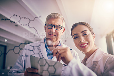 Buy stock photo Portrait of two focused scientists working together solving equations on a glass wall while looking at the camera
