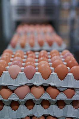 Buy stock photo Shot of packed chicken eggs moving out of a machine inside of a factory