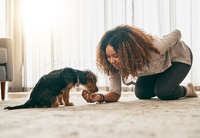 Buy stock photo Shot of a cheerful young woman playing around with her cute little puppy while being seated on the floor at home
