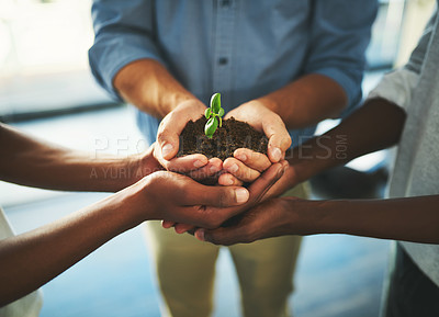 Buy stock photo Closeup shot of a group of unrecognizable businesspeople holding a plant growing out of soil