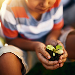 Teach kids to build respect for the environment