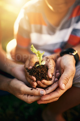 Buy stock photo Closeup shot of a family holding a plant growing in soil