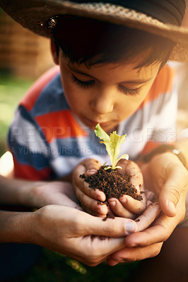 Buy stock photo Shot of a little boy and his parents holding a plant growing in soil