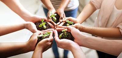 Buy stock photo Closeup shot of a group of people holding plants growing out of soil