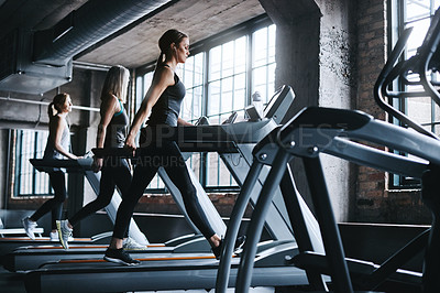 Buy stock photo Full length shot of three attractive and athletic women working out in the gym